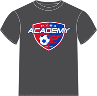 Sport Grey Dri-Fit Academy Tee